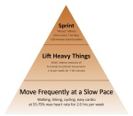Mark Sisson fitness pyramid