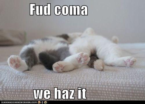 fud-coma