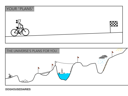 Your plans vs the universe's